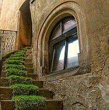 Außentreppe eines alten Gebäudes, mit Grasteppich belegt